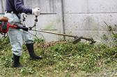 草刈り、伐採